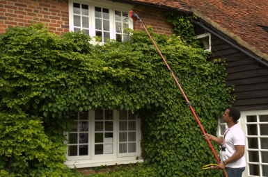 WIndow Cleaning Wokingham
